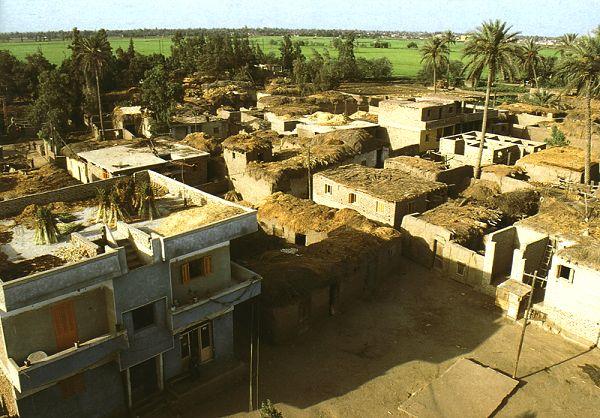 Dorf im Nildelta_6